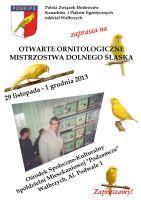 Walbrzych2013
