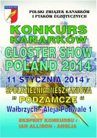 Gloster Show Poland 2014
